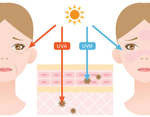 Celestolite Why You Should Be Wearing Sunscreen Every Single Day UV effects infographic